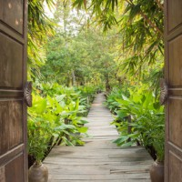 ornamental wooden door gate open to tropical garden style