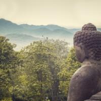 buddha statue in nature